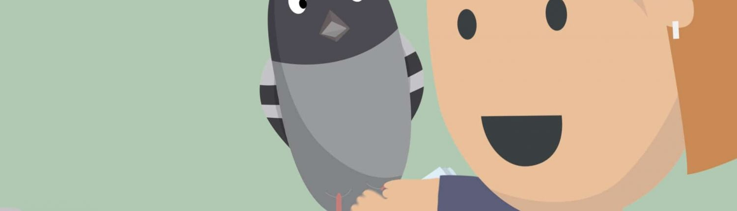 message pigeon animation